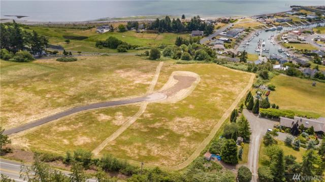 0-XX Strawberry Point Rd, Oak Harbor, WA 98277 (#1480661) :: Canterwood Real Estate Team