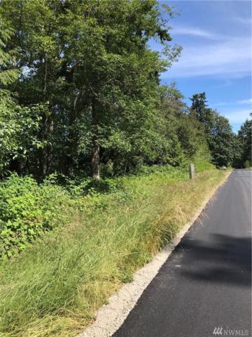 1 Bonnie Lane, Camano Island, WA 98282 (#1480750) :: Better Properties Lacey
