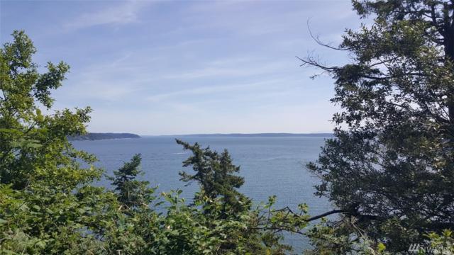 0-xxxx Polnell Shores Dr, Oak Harbor, WA 98277 (#1480910) :: Record Real Estate