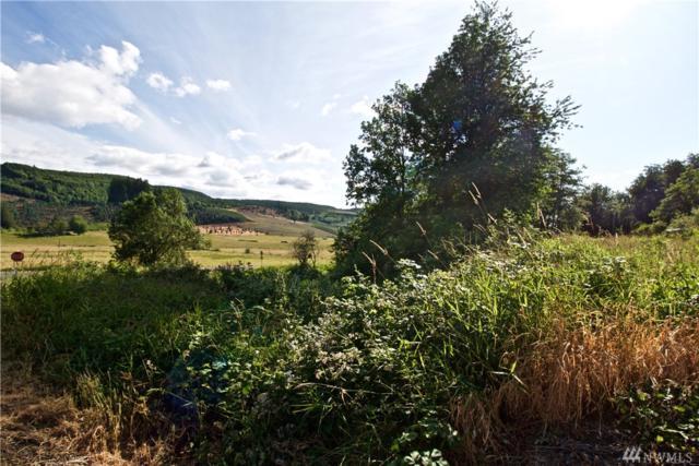0 Workman Rd, Mossyrock, WA 98564 (#1480961) :: Better Properties Lacey