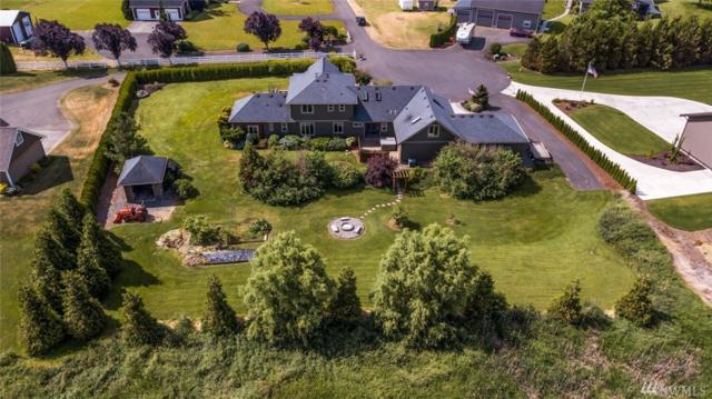 6827 Tranquil Lane, Lynden, WA 98264 (#1481053) :: Commencement Bay Brokers