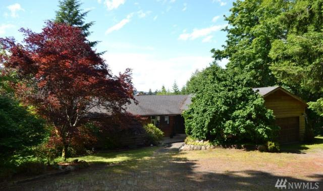 282 Bear Creek Road, Port Angeles, WA 98305 (#1481080) :: Hauer Home Team