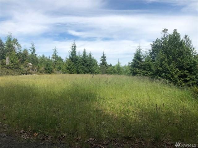 6-XXX Canyon Creek Rd, Brinnon, WA 98320 (#1481198) :: Better Properties Lacey