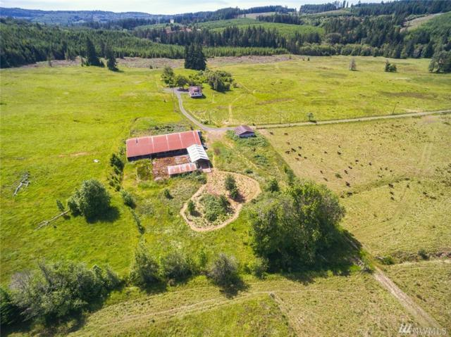 193-&0 Ploegman Rd, Chehalis, WA 98532 (#1481437) :: The Kendra Todd Group at Keller Williams
