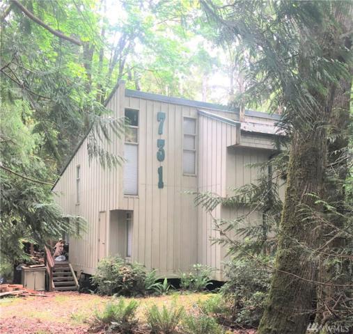 731 E Promontory Rd, Shelton, WA 98584 (#1481443) :: The Kendra Todd Group at Keller Williams