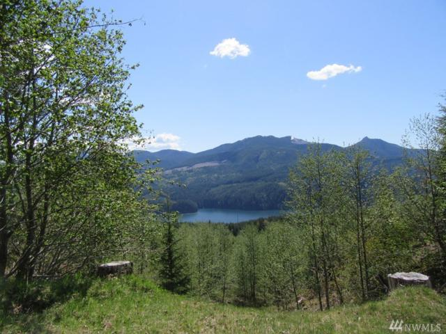 4 Tract 4 Marble Mtn Rd, Cougar, WA 98616 (#1481467) :: Alchemy Real Estate