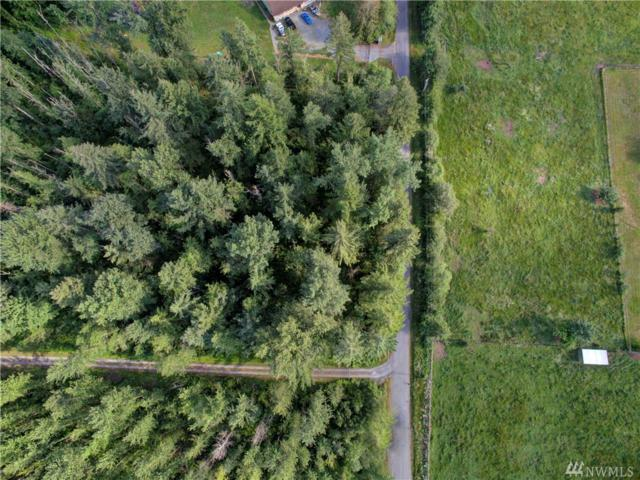 0 138th Ave E, Graham, WA 98338 (#1481640) :: Priority One Realty Inc.