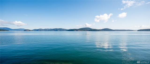 461 Sunrise Rd, Lopez Island, WA 98261 (#1481960) :: Platinum Real Estate Partners