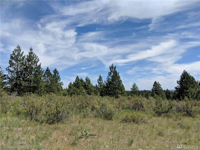 1207 Nancy Lane, Chelan, WA 98816 (#1482314) :: Better Properties Lacey