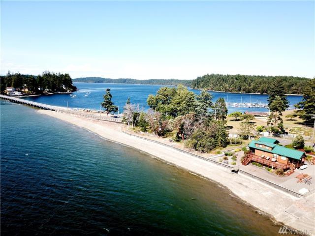 10229 Steamboat Island Rd NW, Olympia, WA 98502 (#1482366) :: KW North Seattle