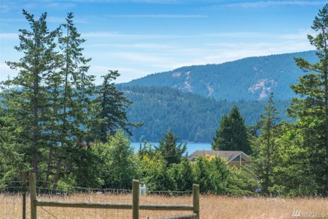 281 Olga Rd. Rd, Orcas Island, WA 98245 (#1482796) :: Real Estate Solutions Group