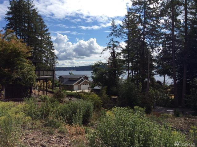 0 E Treasure Island Dr, Grapeview, WA 98546 (#1482922) :: Better Properties Lacey