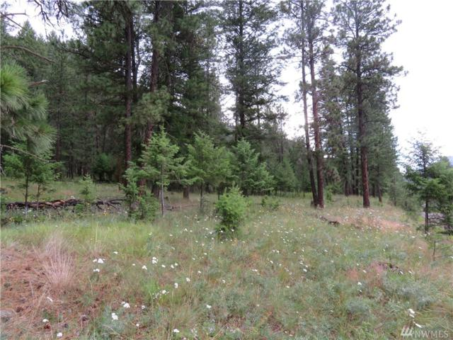 0-Lot 20 Kroupa Rd, Curlew, WA 99118 (#1483082) :: Chris Cross Real Estate Group