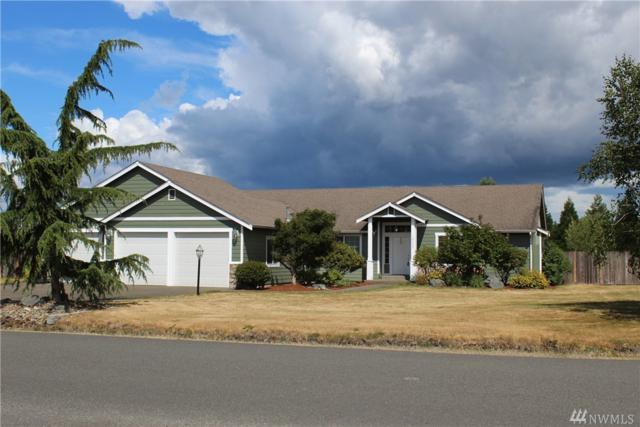 18200 Joseph Dr SW, Rochester, WA 98579 (#1483276) :: Platinum Real Estate Partners