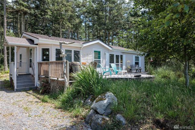 447 Wren Rd, Lopez Island, WA 98261 (#1483330) :: Better Properties Lacey