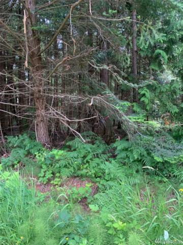 36 Shady Glen, Point Roberts, WA 98281 (#1483358) :: Ben Kinney Real Estate Team