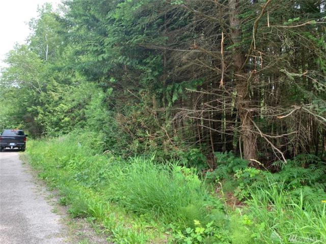 37 Shady Glen, Point Roberts, WA 98281 (#1483359) :: Ben Kinney Real Estate Team