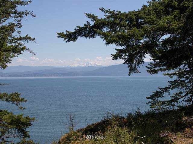1124 Beach Avenue, Lummi Island, WA 98262 (#1483476) :: Tribeca NW Real Estate
