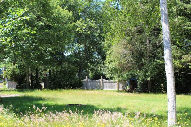 1711 196th, Ocean Park, WA 98640 (#1483484) :: Ben Kinney Real Estate Team