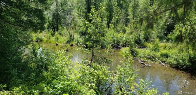 119 Lost River Rd, Mazama, WA 98833 (#1483536) :: Northern Key Team
