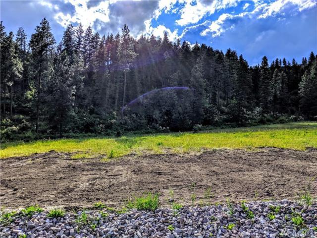 0-NNA Freund Canyon 3 Rd, Leavenworth, WA 98826 (#1483603) :: Chris Cross Real Estate Group