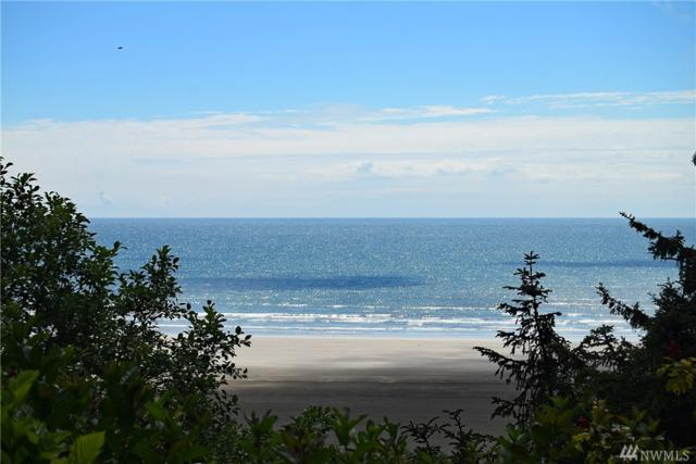 40 Oceanview Dr N, Taholah, WA 98587 (#1483659) :: Northern Key Team