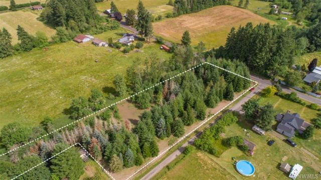 0 Toledo Salmon Creek Rd, Toledo, WA 98591 (#1483771) :: Platinum Real Estate Partners