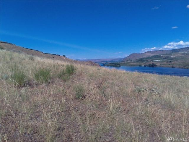 0 Lot 3 Nickell Apple Rd, Pateros, WA 98846 (#1484023) :: Real Estate Solutions Group