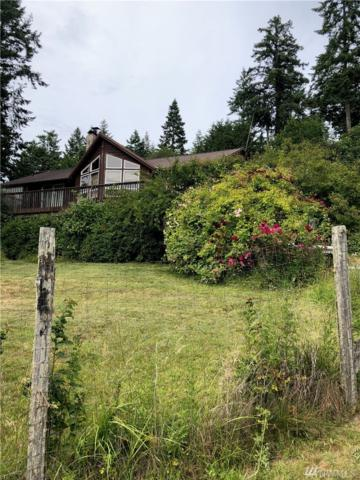 246 Cayou Valley Rd, Orcas Island, WA 98245 (#1484137) :: Northern Key Team