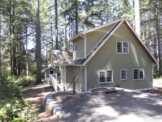 10124 Eagle Place, Anderson Island, WA 98303 (#1484160) :: Platinum Real Estate Partners