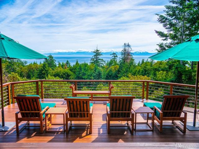 398 Hannah Rd, Friday Harbor, WA 98250 (#1484404) :: Better Properties Lacey