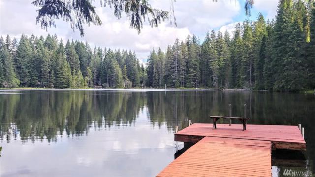 211 NE Lake Christine Rd, Tahuya, WA 98588 (#1484413) :: Center Point Realty LLC