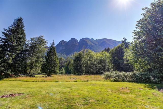 10724 428th Ave SE, North Bend, WA 98045 (#1484477) :: Platinum Real Estate Partners