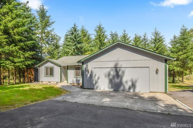 308 Atmore Rd, Toutle, WA 98649 (#1484555) :: Northern Key Team