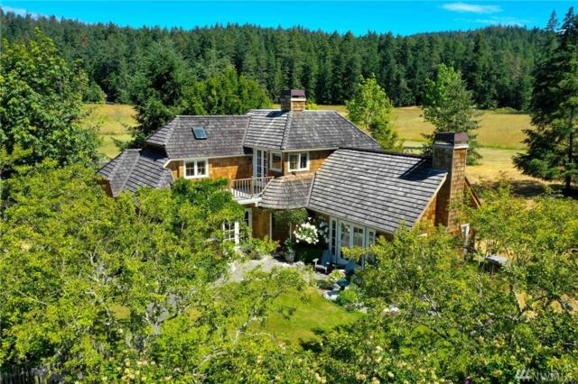 156 Elwha Rock Rd, Orcas Island, WA 98280 (#1484560) :: Real Estate Solutions Group