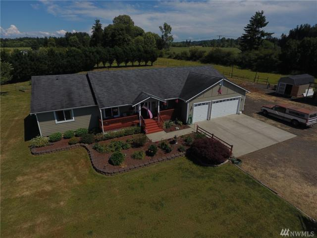 18210 Moon Rd SW, Rochester, WA 98579 (#1484641) :: Platinum Real Estate Partners