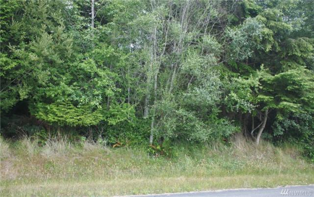 0-xxx Sycamore Rd, Coupeville, WA 98239 (#1484932) :: Platinum Real Estate Partners
