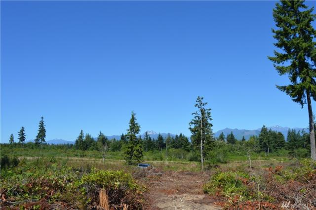 0-Lot 1 Turko Lane N, Seabeck, WA 98380 (#1485278) :: Canterwood Real Estate Team