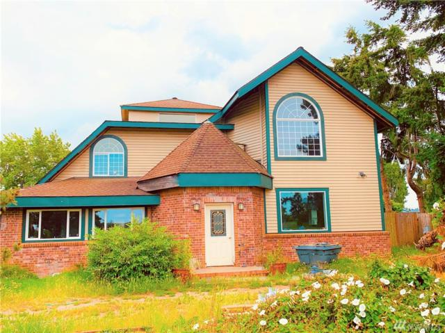 341 Twin View Dr, Sequim, WA 98382 (#1485514) :: Platinum Real Estate Partners