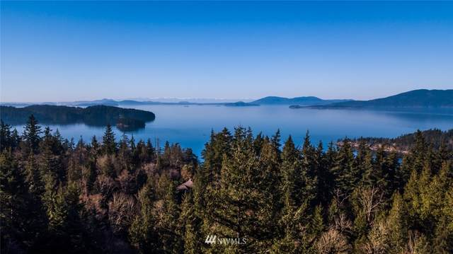832 Chuckanut Drive, Bellingham, WA 98229 (MLS #1485786) :: Brantley Christianson Real Estate