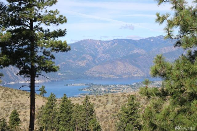 348 Barden Lane, Chelan, WA 98816 (#1485884) :: Real Estate Solutions Group