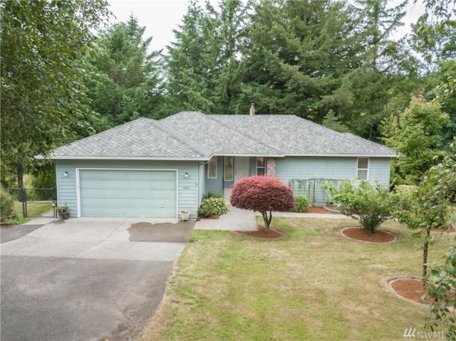 18216 NE Knob Hill Rd, Yacolt, WA 98675 (#1485972) :: Platinum Real Estate Partners