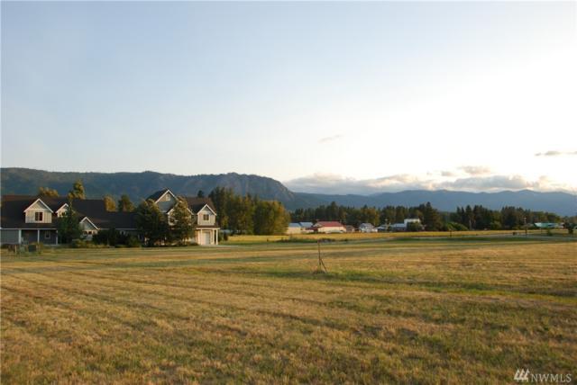 0 Deer Meadow Dr, Cle Elum, WA 98922 (#1486163) :: Platinum Real Estate Partners