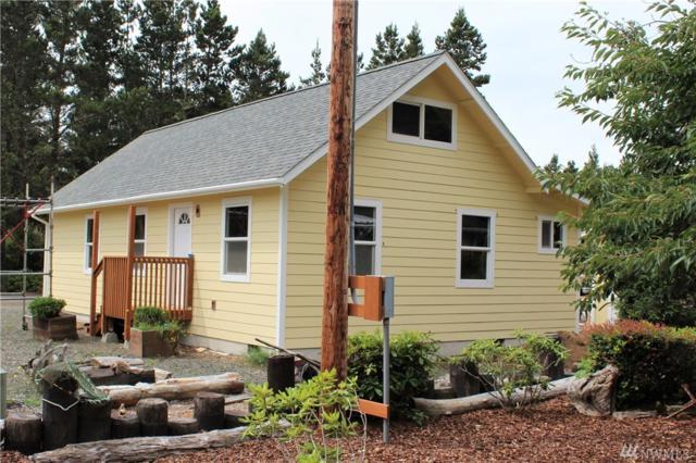 30401 U Place, Ocean Park, WA 98640 (#1486229) :: Better Properties Lacey