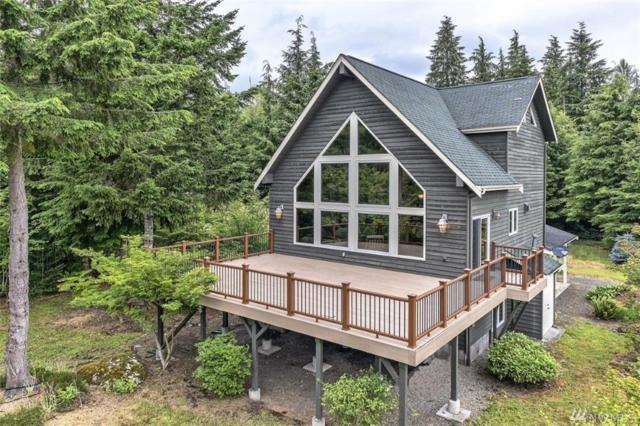 625 Ripley Creek Rd, Quilcene, WA 98376 (#1486340) :: Platinum Real Estate Partners