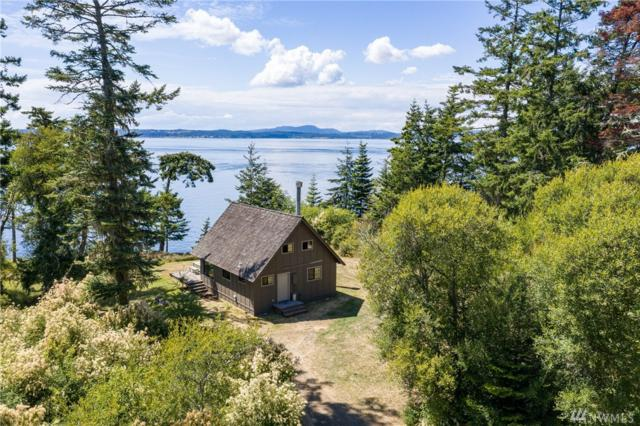 407 Meadow Lane, Lopez Island, WA 98261 (#1486667) :: Real Estate Solutions Group