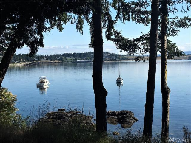 53 Cameron Lane, Friday Harbor, WA 98250 (#1486788) :: Commencement Bay Brokers