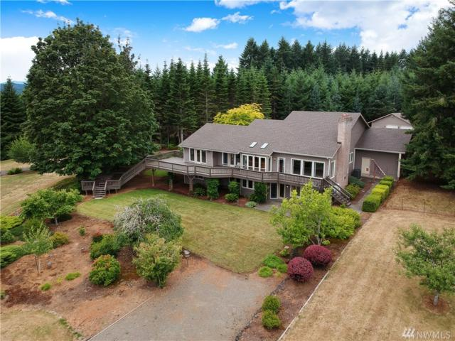 217 Brockway Rd, Chehalis, WA 98532 (#1487250) :: Ben Kinney Real Estate Team