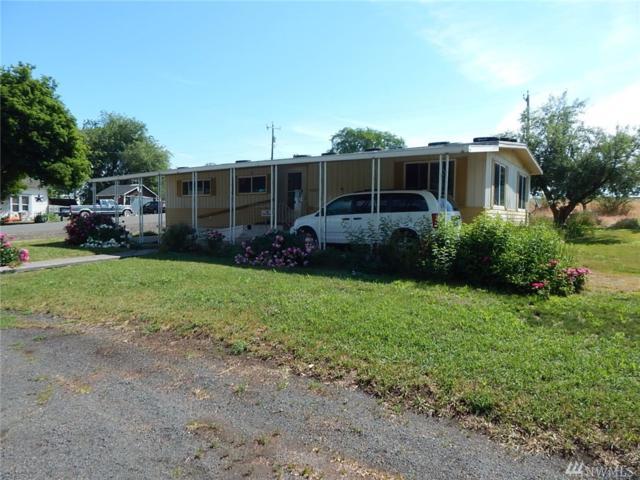 210 N 2nd St, Harrington, WA 99134 (#1487324) :: Kimberly Gartland Group