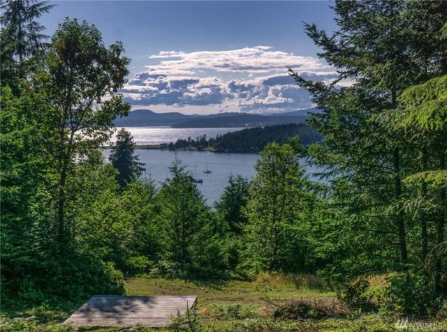 0-Lot #9 Rum Rummer Rd, Lopez Island, WA 98261 (#1487338) :: Platinum Real Estate Partners